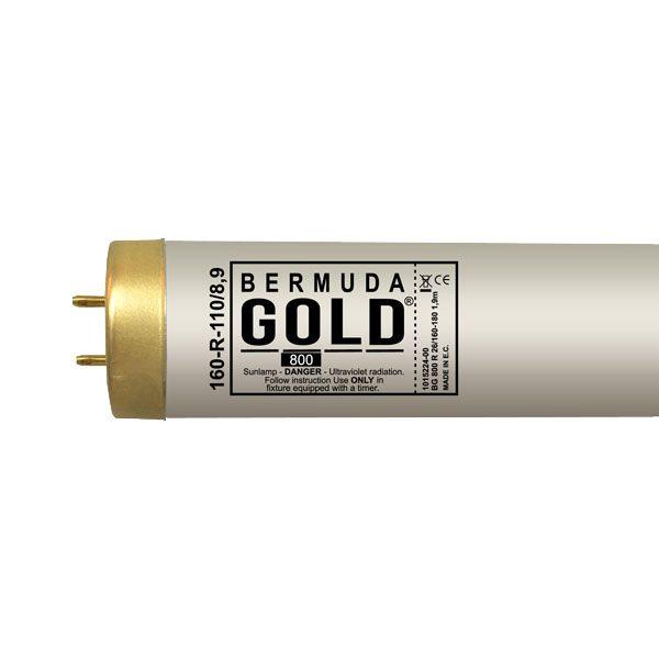Bermuda Gold 26/160-180 WR XL